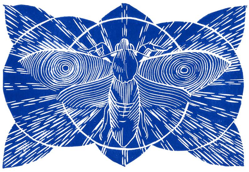 morethanthis-prints-diane-alexandre-tama-nocturna-2