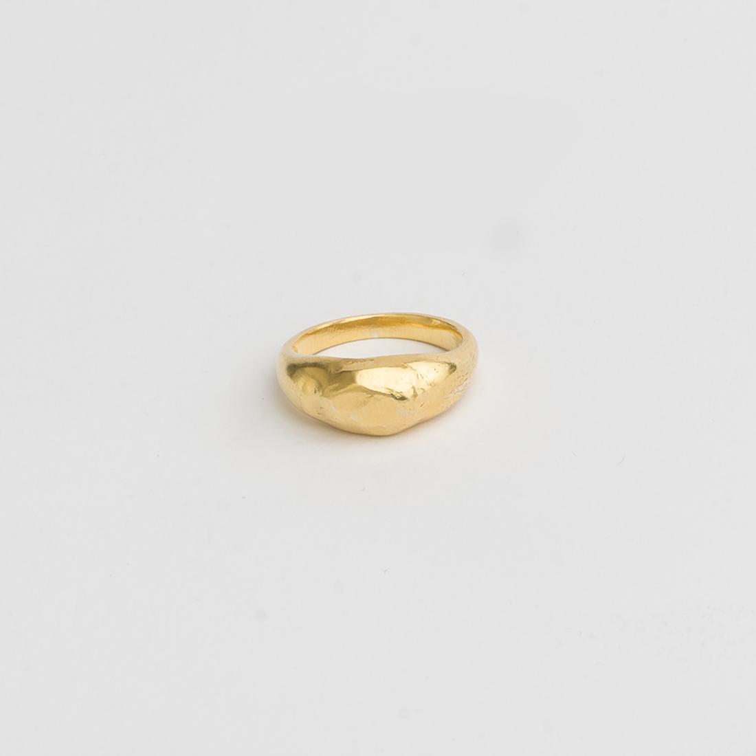 128.OPIS1-g-ring