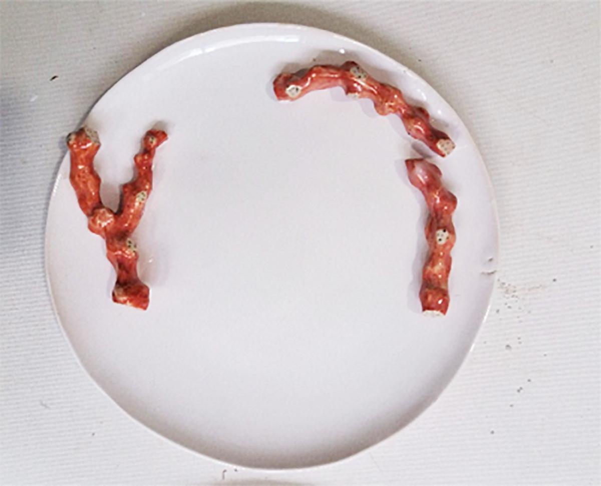 plate2g